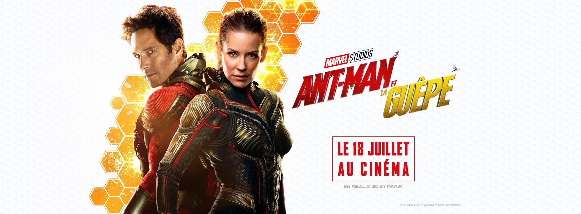 """Bannière du film """"Ant-Man et la Guêpe"""""""