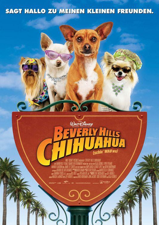 Les chihuahua de beverly hill  dans Films pour enfants beverly_hills_chihuahua_ver4