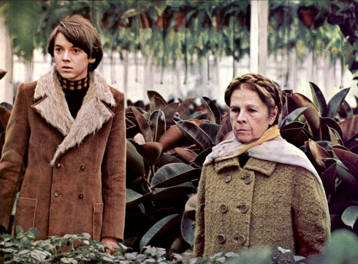 harold n maude Movie: harold and maude (1971) – young, rich, and obsessed with death, harold finds himself changed forever when he meets lively septuagenarian maude at a funeral | download torrents at zooqle.