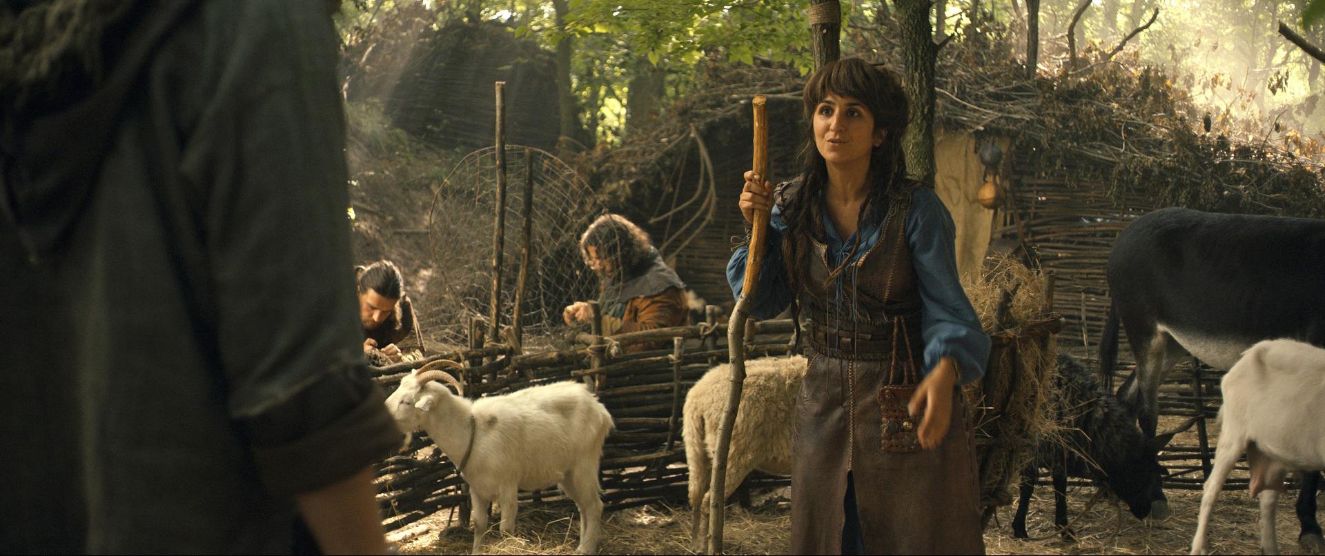 Robin des bois, la véritable histoire  la critique du film ~ Parodie Robin Des Bois