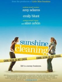 Sunshine cleaning - la critique