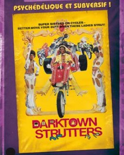 Darktown strutters - la critique + test DVD