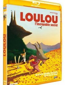 Loulou l'incroyable secret - le test blu-ray