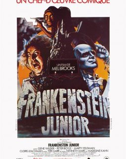 Frankenstein Junior - la critique du film