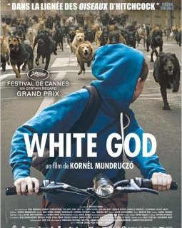 White God - Kornél Mundruczó - critique du film + le test DVD
