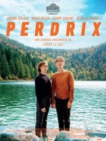 Perdrix - la critique du film