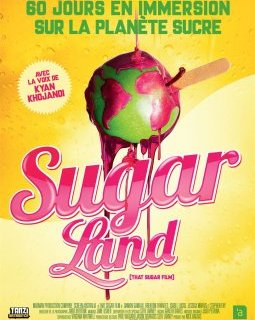 Sugarland - la critique du film + test DVD