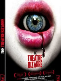 The theatre bizarre - le test DVD