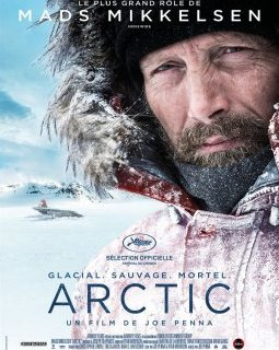 Arctic - la critique du film