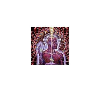 Lateralus - Tool