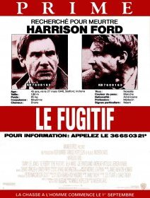 Le fugitif - La critique