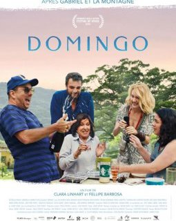Domingo - la critique du film