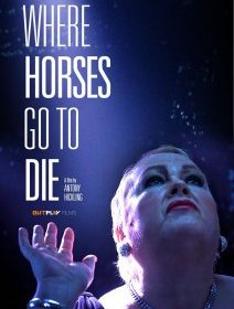 Where horses go to die - la critique du film