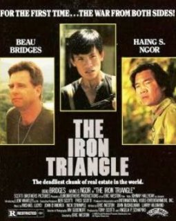 Le triangle de fer (The Iron Triangle) - la critique d'un film rare avec Johnny Hallyday