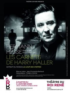 Les carnets de Harry Haller - la chronique du spectacle
