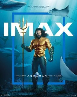 Box-office France : Aquaman surnage la concurrence, mais Astérix demeure champion de France