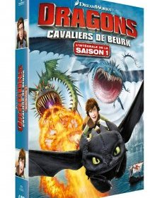 Dragons : Cavaliers de Beurk Saison 1 - la critique + le test DVD