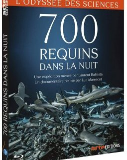 700 requins dans la nuit - la critique du documentaire + test DVD