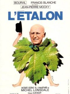 L'étalon - la critique du film