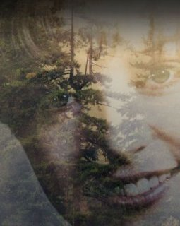 Twin Peaks de David Lynch : it's Showtime avec le premier teaser !