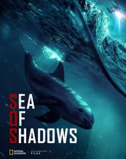 Sea of shadows - la critique du documentaire