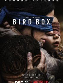 Bird Box - la critique de la production Netflix