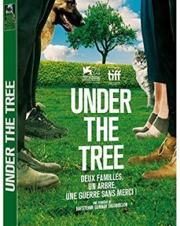 Under the tree - le test DVD