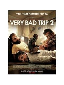 Very bad trip 2 - la critique