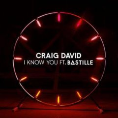 Craig David propose le clip de I know you avec Bastille en featuring