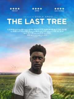 The last tree - Shona Amoo - critique du film